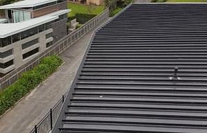 Gutter guard Deck roof